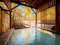 【露天「葉隠れの湯」】源泉かけ流し、白い濁り湯が特徴の野趣のある風呂。肌を滑らかにする美人の湯と人気