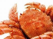 夕食時、毛蟹を一杯お付けします(イメージ)