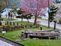 春は湖畔の桜や芝が美しいロビー前
