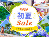 【じゃらん初夏SALE】<バイキング>通常価格から20%オフ☆絶景!湖側客室確約プラン
