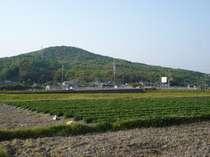 17階レストランから見える雄丘山(おっこうさん)