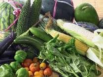 「嵯峨野」夕食ビュッフェ 地元で採れた元気な野菜を使っています!(イメージ)