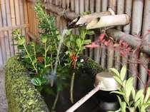 【湧水】美しい自然の宝庫=阿蘇。自然を身近に感じて過ごそう。/一例