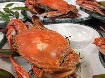 知多の味覚渡り蟹