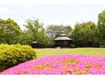 広大な庭にも春到来。ピクニック気分で