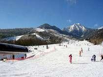 サンメドウズかシャトレーゼの1日券付。お子様用無料レンタルスキーあり。