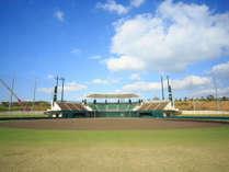 プロ野球の沖縄キャンプを間近で見学!(素泊まり)※会場送迎なし