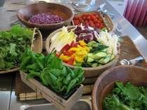 【バイキング】 アクのない野菜を提供♪サラダデビューは農園ホテルで♪