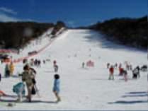富士見高原スキーリフト1日券付きプラン