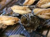 刺身が好きな一人旅の方におすすめ地魚の刺身盛り皿と熱々のオコゼの唐揚げを食べるプラン