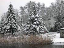 雪が降り積った朝湖畔より家を