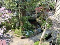 客室より庭園