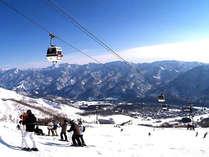 栂池高原スキー場-初級から上級コースを備えた本格的スキー場です。-