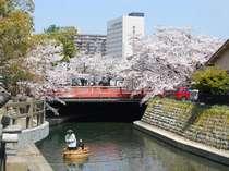 ホテル遠景(春) 桜の下を進む たらい舟