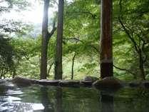 自然に囲まれ、マイナスイオンもたっぷりの露天風呂