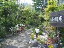 初夏の前庭