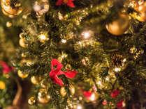 【クリスマス特別ディナー】12/15~12/25限定≪クリスマスケーキ付きでハッピークリスマス!≫