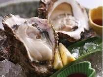 季節ごとに旬の牡蠣を「生」でお楽しみ
