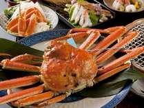 石川県ブランド冬の蟹王「加能蟹」は絶品です。青タグ付。
