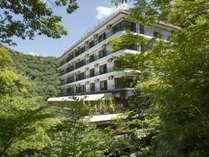 緑に囲まれた森の中のホテルです!