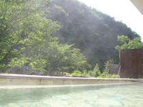 露天風呂に入りながら森林浴