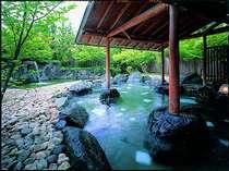癒しの特典付☆自分へのご褒美に…約6,000坪の日本庭園と優雅な空間をひとり占め!一人旅プラン