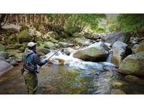 渓流釣りプラン2