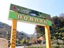【鈍川温泉街入口】源泉中のラドンの含有量が多い「美人の湯」道後・本谷とともに伊予の三湯のひとつ。