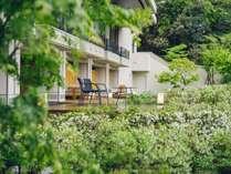 中庭にはチャノキとツツジを植えた「つむぎ茶畑」が広がります。