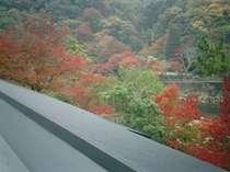 【紅葉】おもとのお部屋二階からの景観