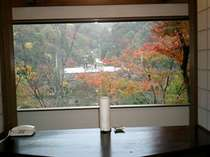 【紅葉】神田川敏郎プロデュース創作会席「心」食事処の景観