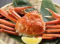 日本海直送の松葉かに!かに肉がたっぷり詰まったカニ足。甘いカニみそ。お楽しみ下さいませ。