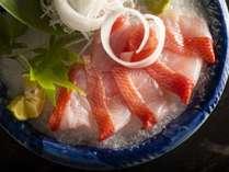 【お造り】季節ごとの旬の地魚をお楽しみいただけます。