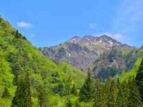 【新緑】日本100名山焼岳
