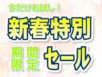 【新春特別セール・連泊プラン】期間限定!一日一室限定!~特別室大島~今だけお試し価格! ※2泊以上