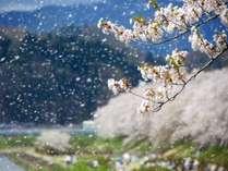 ◇◆じゃらん限定◆◇お花見に行こう!旬のおもてなしで春を満喫☆≪1泊2食付プラン≫