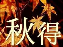 ★≪秋得≫★10月・11月限定特別プラン/和洋朝食バイキング付き