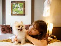 愛犬と飼い主さんもHappyに過ごせる「伊豆高原ウブドの森」※愛犬はナーベルト着用で安心