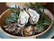 【カンパイ!広島県・冬じゃなくても牡蠣食べたい】<グルメプラン>ブランド「大一粒かき小町」と旬菜旬味