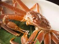 ●能登の冬☆活蟹会席●活ズワイガニを刺し・ゆで・焼き・鍋でたっぷり楽しんで♪舟盛も付いた大満足プラン
