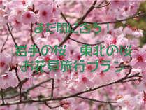 【まだ間に合う!お花見ツアー】岩手の桜たちに逢いに行こう!1泊2食付夕/食は三陸おもてなし会席コース