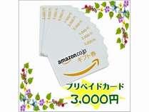 アマゾン3000