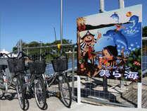 1日1組限定 沖縄古民家風の宿で過ごす ペンション美ら海