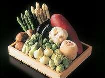 てんぷらと和食 山の上 食材イメージ