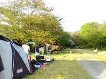 シーサイドライン沿いの高台のキャンプ場♪夕陽が絶景!ワンちゃん無料歓迎お散歩にも最適