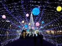 【12月限定】空気の美味しい冬の古都奈良を満喫!