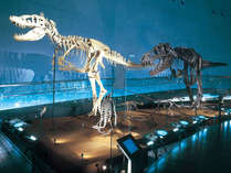 【恐竜博物館】≪入場券付≫ご家族で恐竜王国エンジョイ♪子供入場券も付いて得じゃん♪