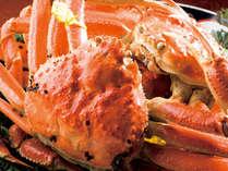【タグ付越前がに2杯】★蟹のフルコース!年に一度は食べたい味覚の王者★7つの特典付