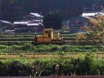 【観光プラン】 信楽満喫旅!近江牛プラン 窯元を訪ねよう!
