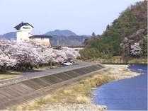 ホテル風景(春)